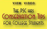 Conservation tips for college students